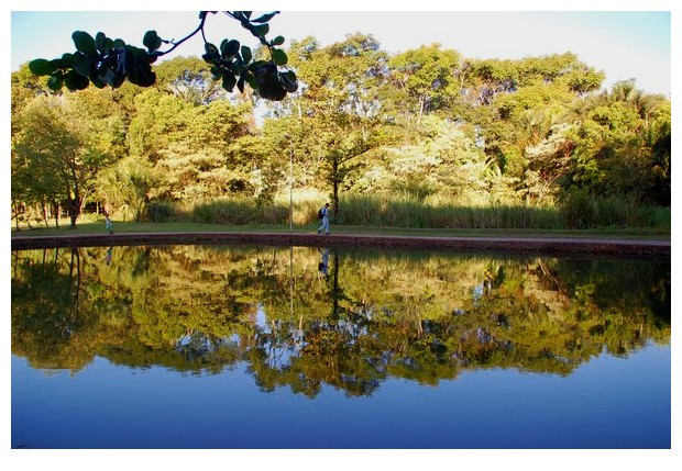 Lake in Bosque dos Buritis gardens of Gioania