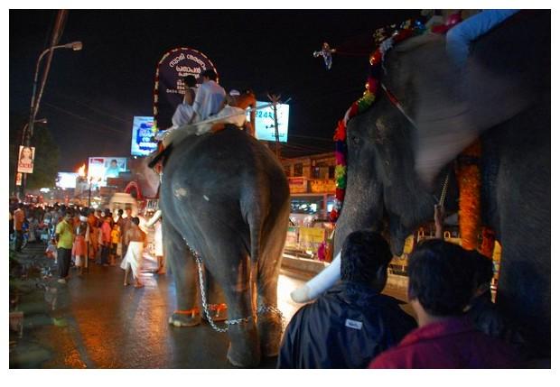 A temple procession, Kochi, Kerala