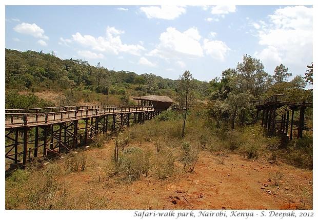 Safariwalk zoo, Nairobi Kenya - S. Deepak, 2012