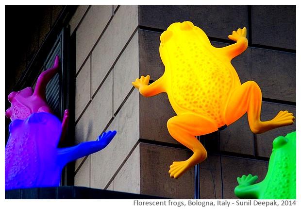 Florescent frogs Bologna, Italy - Sunil Deepak, 2014