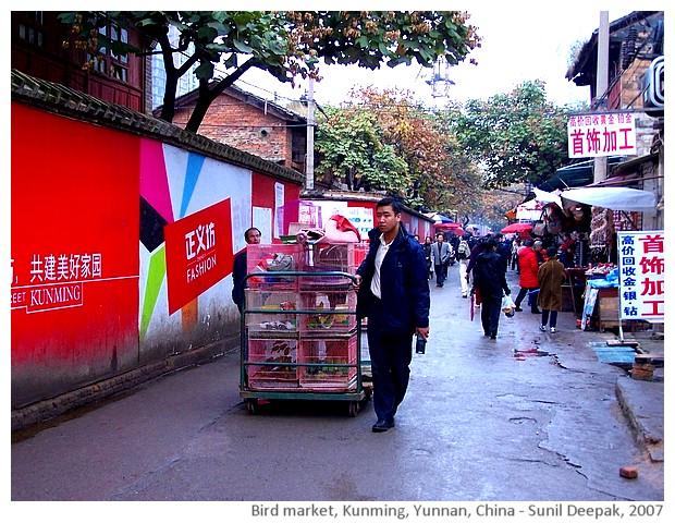 Bird market, Kunming, China - images by Sunil Deepak, 2007