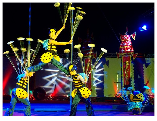Honey bees acrobatic show in a chinese circus