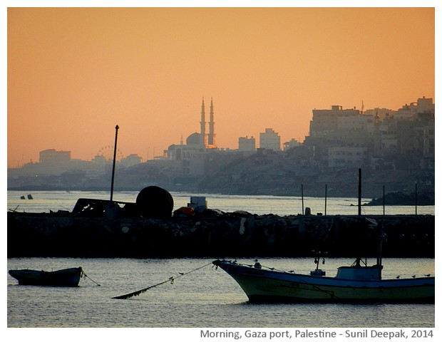 Morning, Gaza port, Palestine - images Sunil Deepak, 2014