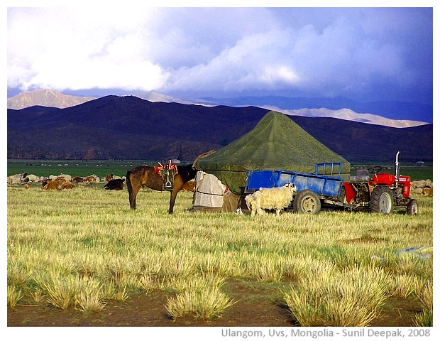 Mongolian tent and animals, Ulangom, Uvs, Mongolia - images by Sunil Deepak, 2008