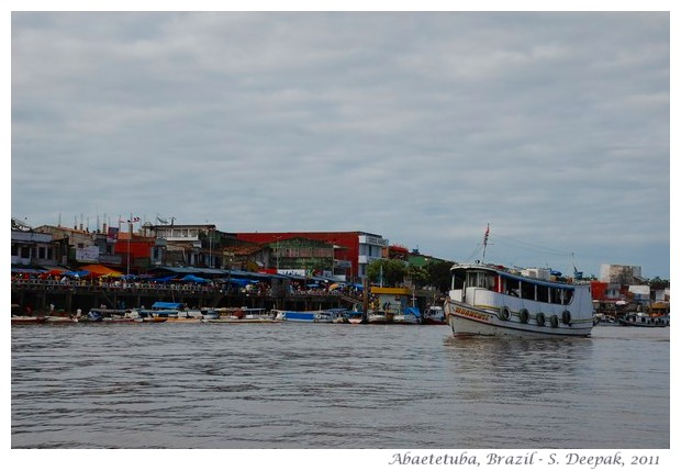 River islands in Amazon rain forest, images by S. Deepak