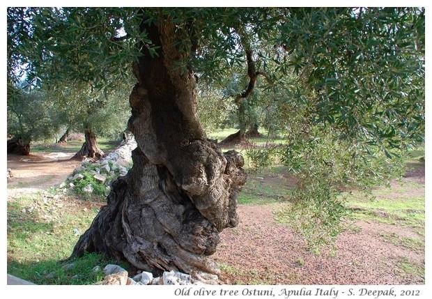 Ostuni, Apulia region Italy