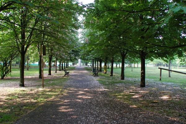 Park Bologna - images by Sunil Deepak