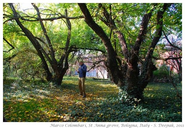Marco Colombari and nature walk, st anna grove - S. Deepak, 2011