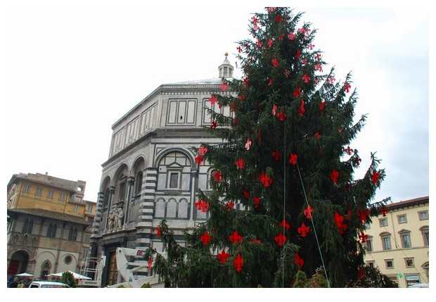 Christmas tree near cathedral of Florence, Italy
