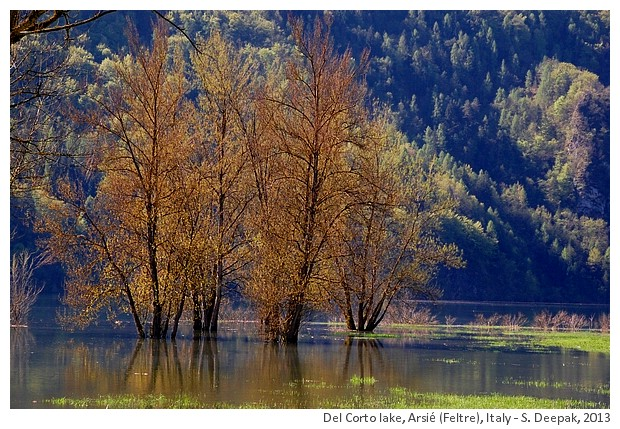 Del Corto Lake, Arsié (Feltre), Italy - S. Deepak, 2013