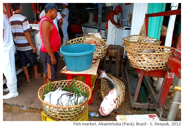 Fishing baskets, Abaetetuba, Parà, Brazil - S. Deepak, 2012