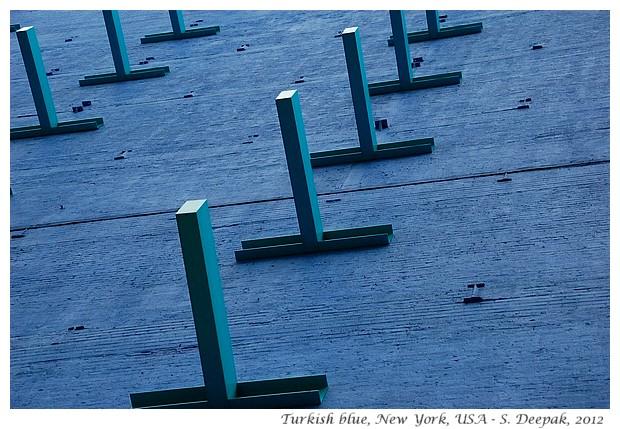 Turkish blue in USA - S. Deepak, 2012