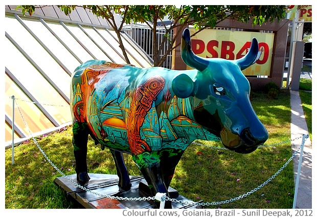 Colourful cow sculptures - Goiania Brazil - images by Sunil Deepak, 2014