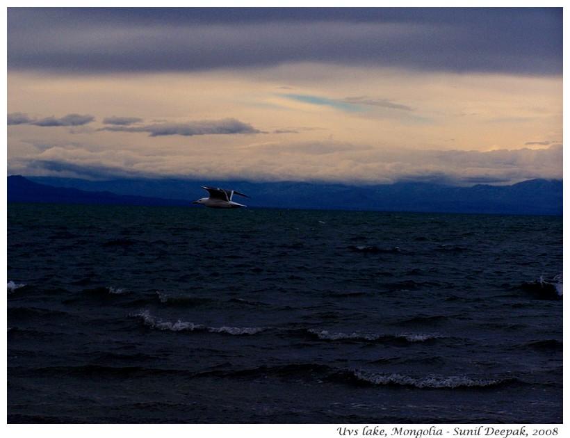 Uvs lake, Mongolia - Images by Sunil Deepak