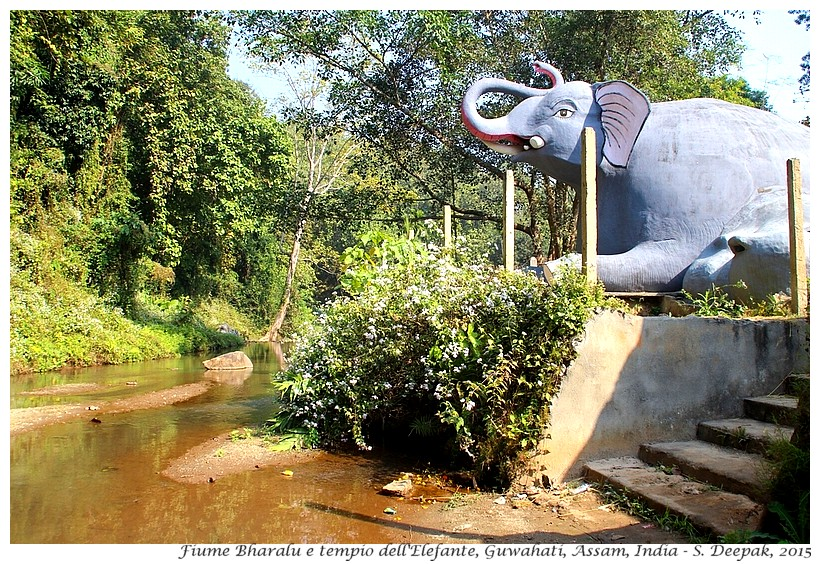 Il tempio dell'elefante, Assam India - Images by Sunil Deepak