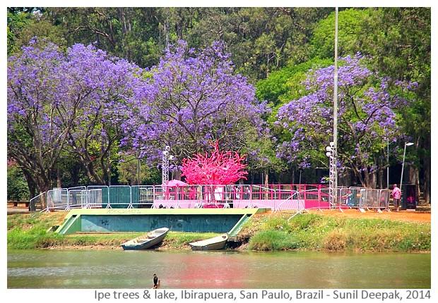 Lake Ibirapuera, San Paulo, Brazil - Images by Sunil Deepak, 2014