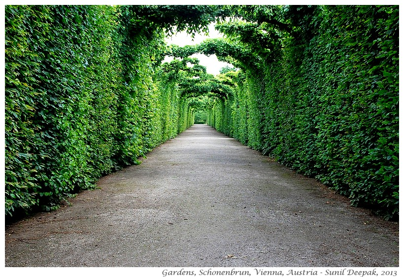 Gardens, Schonenbrun, Vienna, Austria - Images by Sunil Deepak, 2013