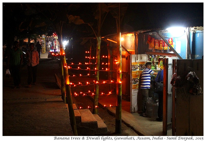 Diwali lights on banana trees, Guwahati, Assam, India - Images by Sunil Deepak