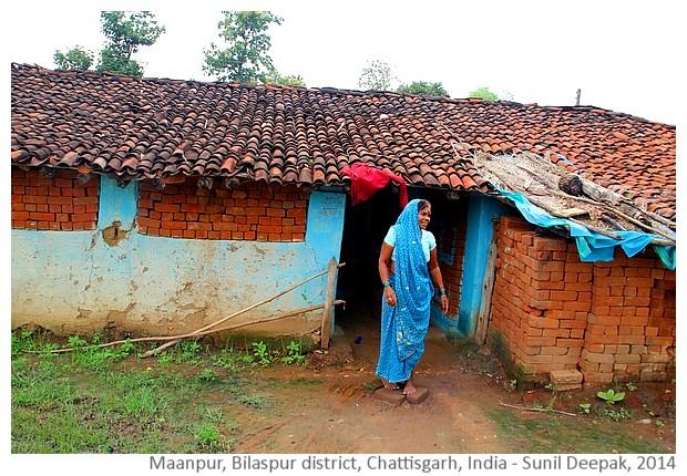 Chayachitrakar september 2014 for Laghetti per tartarughe usati